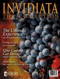 The Invidiata Collection Fall 2014
